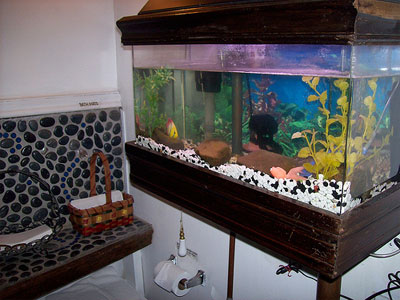 akwarium w łazience remont łazienki warszawa w 10 dni